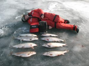 lake-simcoe-lake-trout-whitefish- darek