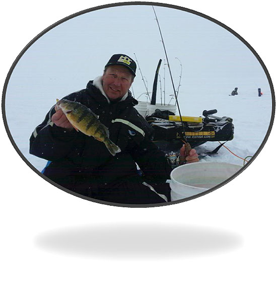 Wil Wegman Jumbo Perch